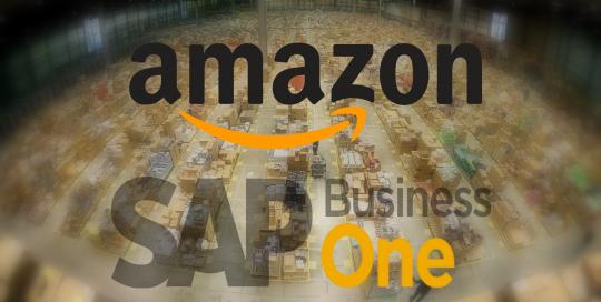 Integracja Amazon SAP Business Oneportfolio_amazon_sapb1